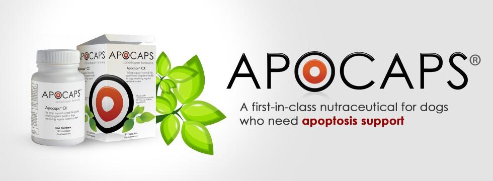 apocap-slide.jpg